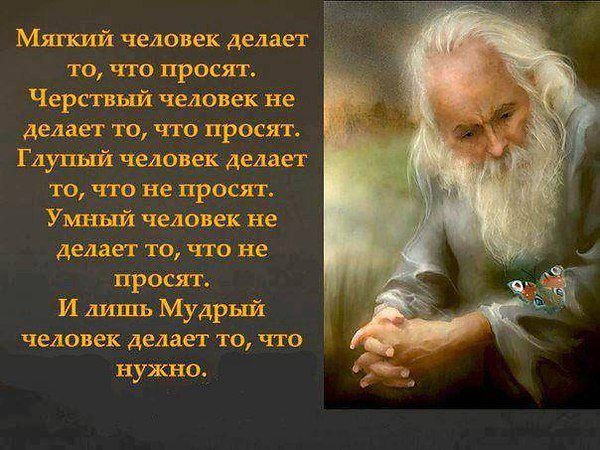http://data17.gallery.ru/albums/gallery/140874-d12e5-85622836-m750x740-u36434.jpg