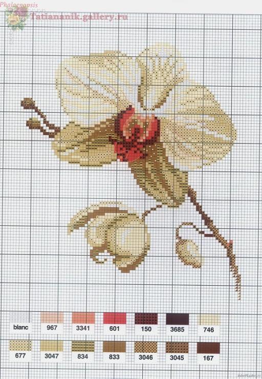 Вышивки схемы с орхидеями 606