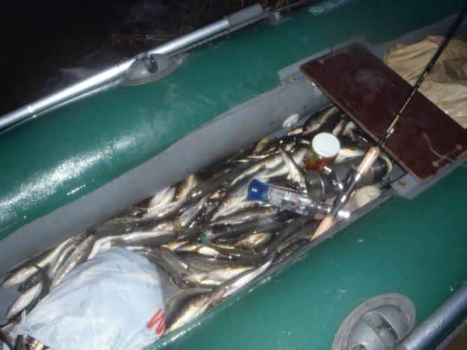 сохранялка на нашу рыбалку