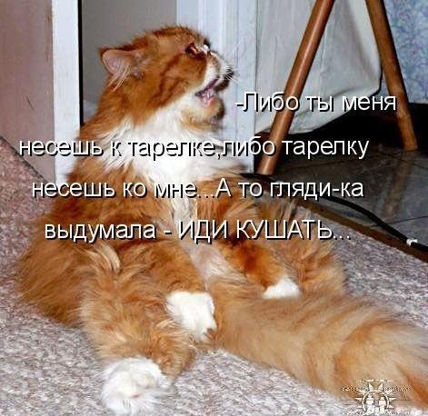 http://data17.gallery.ru/albums/gallery/275537-b6d02-77441381-m750x740-ue2838.jpg