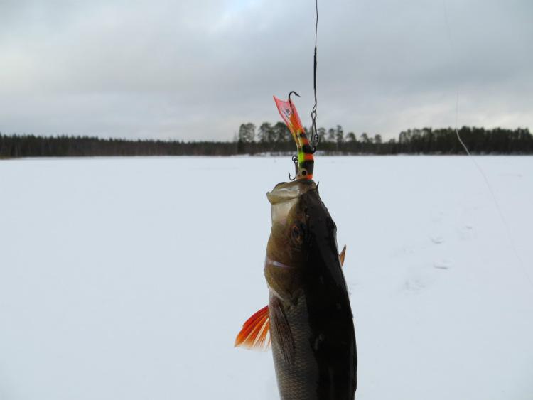 рыбалка в карелии когда начать