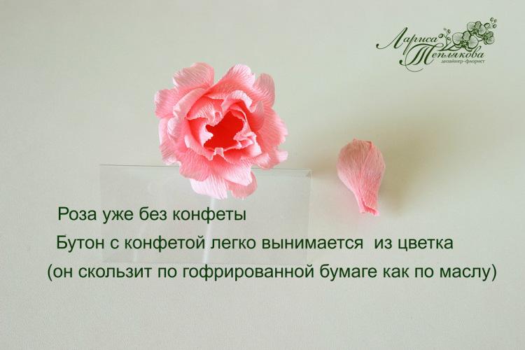 http://data17.gallery.ru/albums/gallery/387374-20412-93043831-m750x740-u25936.jpg